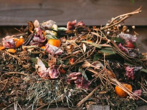ilustrativna fotografija kompostera